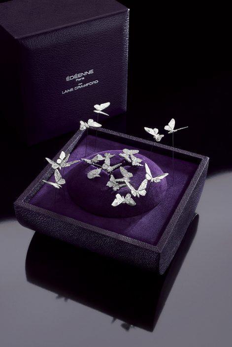 Dossier presse-Ecrin Papillons